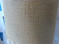 Needlepoint Canvas P1100859