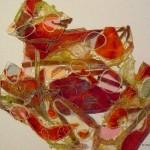Free Lace P1120946-001