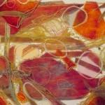 Free Lace P1120953-001