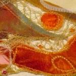 Free Lace P1120960-001