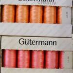 Gutermann 5-P1130511