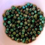 beads P1170225