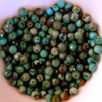 beads P1170227